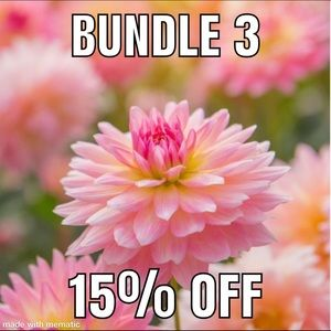 Other - Bundle 3 and get 15% off